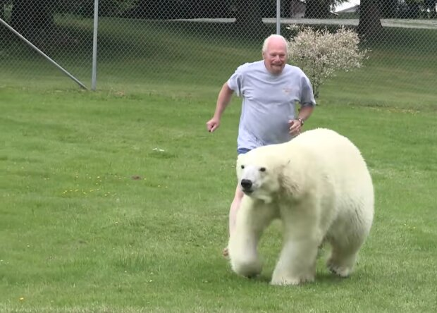 Eine ungewöhnliche Freundschaftsgeschichte : Ein Mann ist seit 23 Jahren mit einem Eisbären befreundet und schwimmt sogar mit ihm zusammen