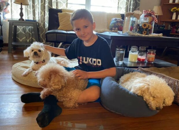 Ein adoptierter Junge nimmt aus einem Tierheim alte Hunde, die alle ablehnen