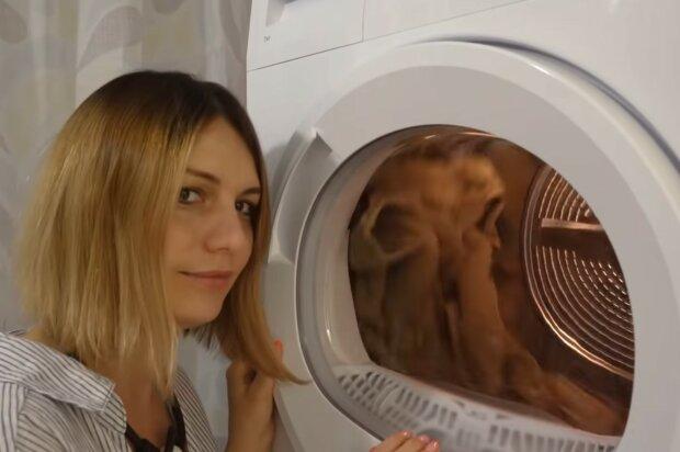 Nützliche Entdeckung für jede Hausfrau. Quelle: Screenshot YouTube