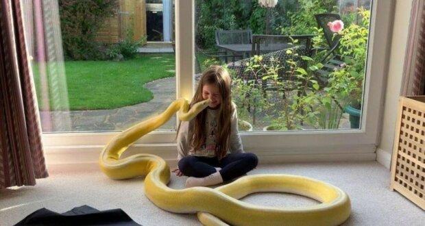 Eine rührende Freundschaft acht Jahre lang: ein Mädchen und eine Riesenschlange namens Belle
