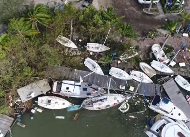 Ein Teenager pflanzte 524 Baumsetzlinge, um die Küste nach dem Sturm wieder zu begrünen
