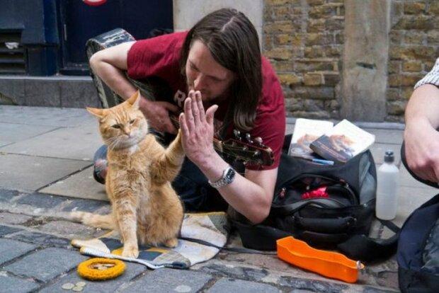 Sie haben einander gefunden: Der rote Kater Bob, der das Leben des obdachlosen James geändert hat