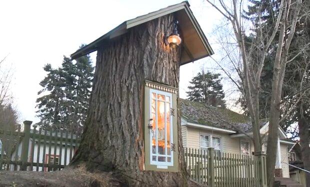 Die ungewöhnlichste Bibliothek. Quelle: YouTube Screenshot