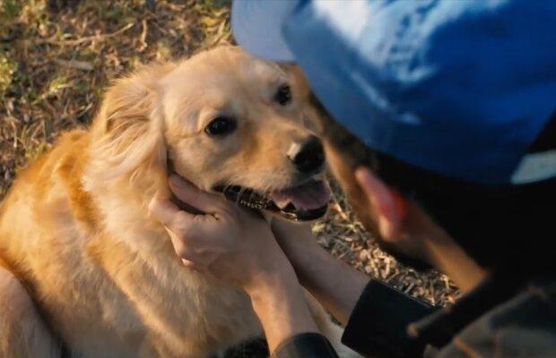Junge mit dem Hund. Quelle: Screenshot Youtube