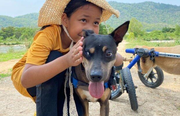 Ein besonderer Hund. Quelle: YouTube Screenshot