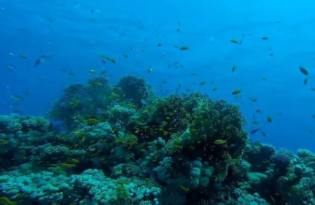 Unterwasser: Warum die antike Stadt Samabah versank