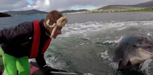 Ein Fischer besucht jeden Tag einen berühmten Delfin, der Kommunikation braucht