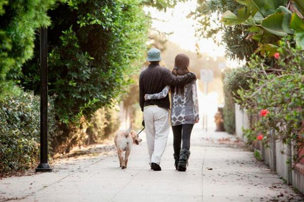 Wie ein Kerl und ein Mädchen mit dem Hund  spazieren gegangen und zurück nach Hause als Millionäre gekommen