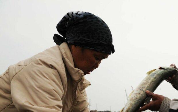 Eine Frau kochte Fisch und fand darin einen interessanten und wertvollen Fund
