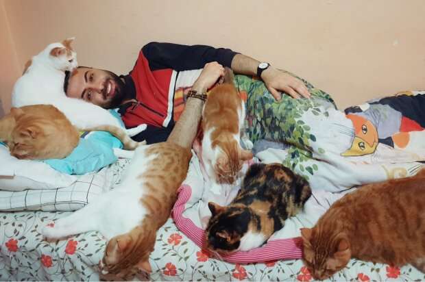 Wie eine streunende Katze das Leben eines Mannes veränderte