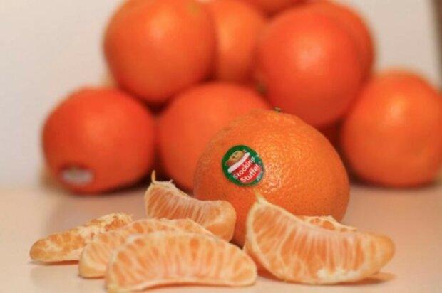 Aufkleber auf Früchten sind keine Marken für Umzugsunternehmen. Sie sind wichtige Informationen für Käufer. Denken Sie daran und verwenden Sie