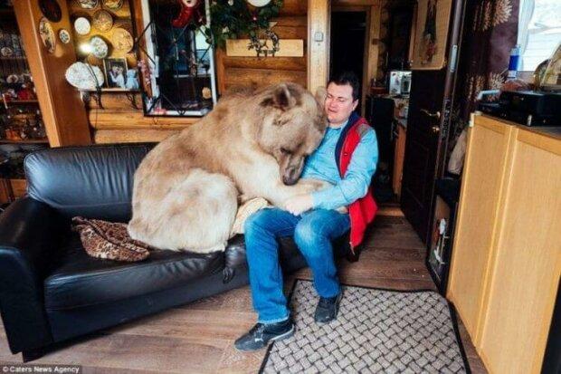 Dieser Bär lebt seit mehr als 20 Jahren wie ein Haustier