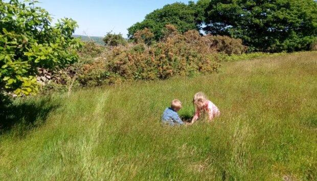 Verzicht auf zivilisatorische Bequemlichkeiten: eine britische Familie führt ein völlig autonomes Leben auf einem Bauernhof