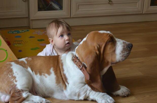 Kind mit dem vierbeinigen Freund. Quelle: Screenshot Youtube