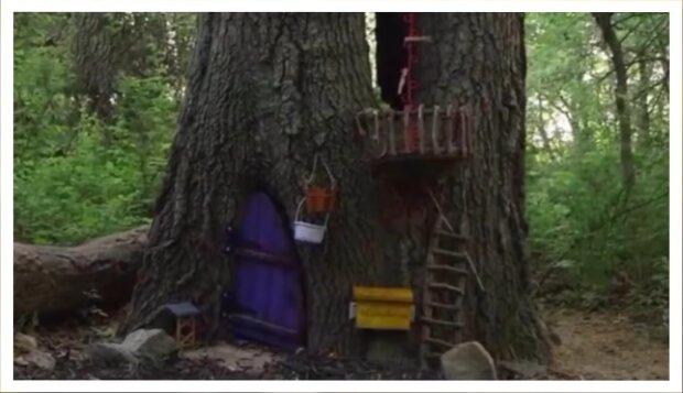 Portal zu einem Märchen. Quelle: Screenshot Youtube