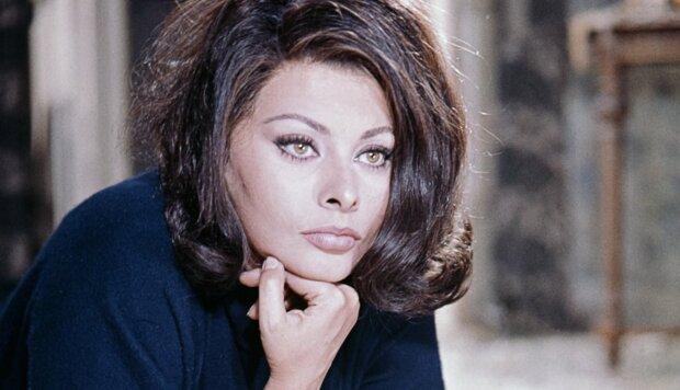 """""""Deine Nase ist zu lang"""": Die Geheimnisse von Sophia Lorens Schönheit und Erfolg"""