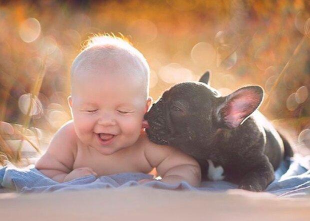 Dylan und der Hund wurden am selben Tag geboren und wachsen wie echte Brüder auf