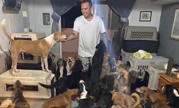 In Mexiko versteckte ein Mann 300 streunende Tiere zu Hause, um sie vor einem Hurrikan zu retten