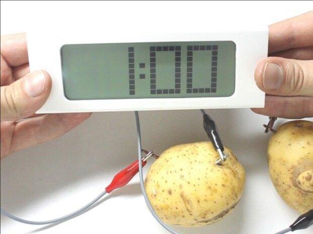 Entfernt Rost, poliert, pflegt die Haut: die wichtigsten Eigenschaften von Kartoffeln