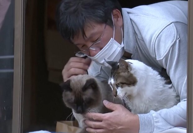 Sakae Kato und seine Katzen. Quelle: Screenshot Youtube