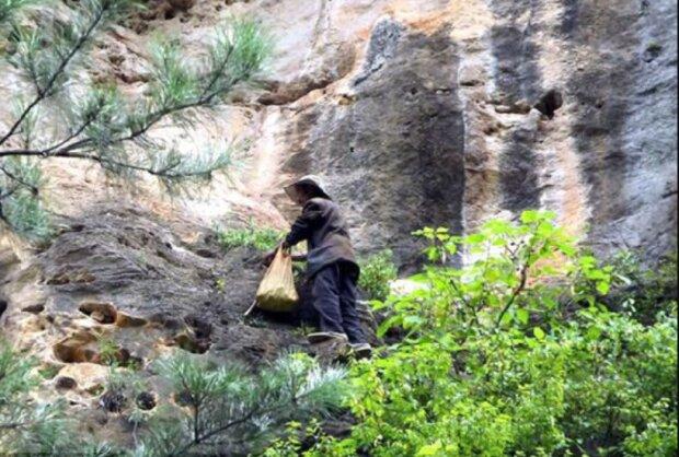 Ein Mann wohnt seit 20 Jahren in einer Höhle, um mit den Menschen nicht zu kommunizieren