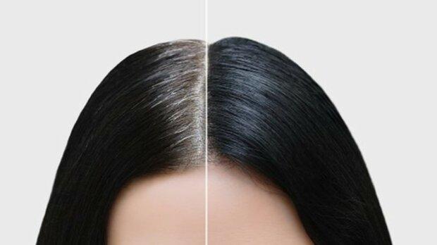 Wie graues Haar durch Stress erscheint. Wissenschaftler haben den Mechanismus herausgefunden