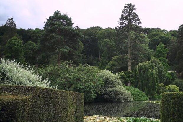 Garten-Restaurierung. Quelle: YouTube Screenshot