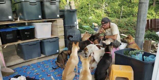 Jetzt hat das litauische Paar 15 Hunde. Quelle: Screenshot YouTube