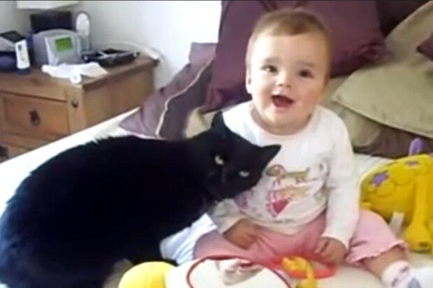 Fürsorgliches Tier unabhängig von Aberglauben. Quelle: Screenshot YouTube