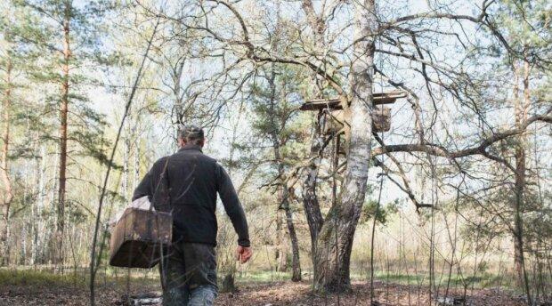 Der Stolz hielt den Mann davon ab, Hilfe zu suchen: Er lebte 11 Jahre lang in dem kalten, feuchten Wald