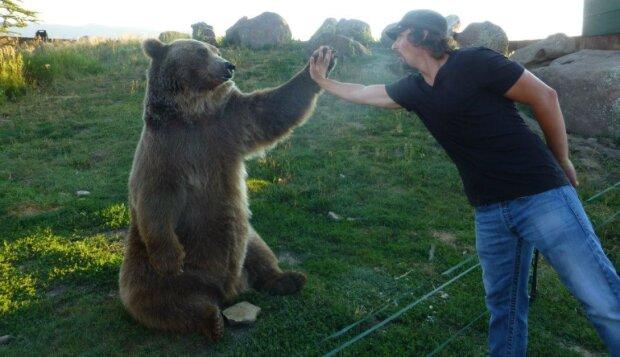 Die Geschichte von dem Mann, der zwei Bären gefunden und aufgezogen hat