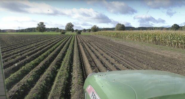 Das Landwirtschaft. Quelle: Screenshot YouTube