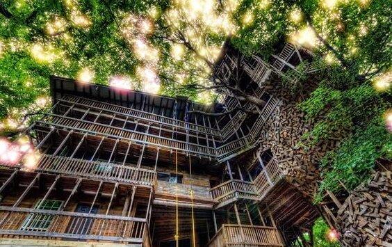 Das Baumhaus. Quelle: Screenshot YouTube