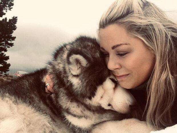 Das Mädchen trug ihren Hund in die Berge oben auf Kerngroms, so dass er zum letzten Mal Schnee sah