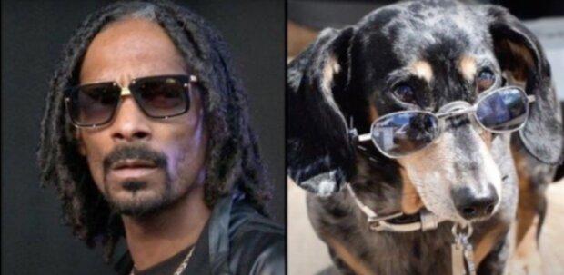 Snoop Dogg. Quelle: Screenshot YouTube