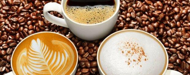 Foto: coffee-perfect.de