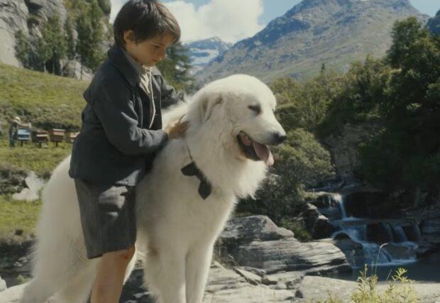 Hund und Junge, Quelle: Screenshot YouTube