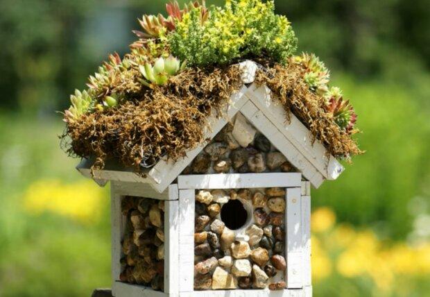 Das Vogelhaus im Design