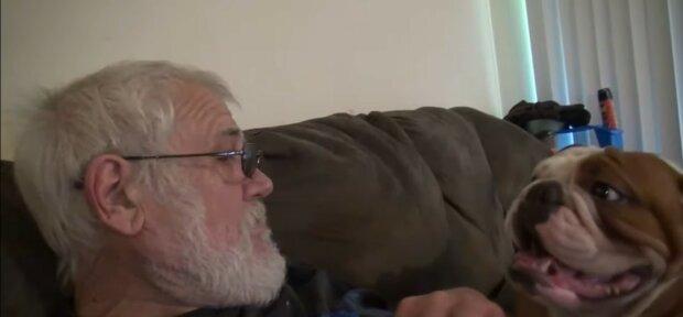 Älterer Mann wurde ohne seine geliebten Hunde geblieben: fürsorgliche Menschen kamen zu Hilfe