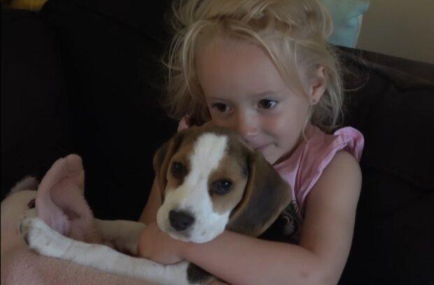 Hund mit einem kleinen Mädchen. Quelle: YouTube Screenshot