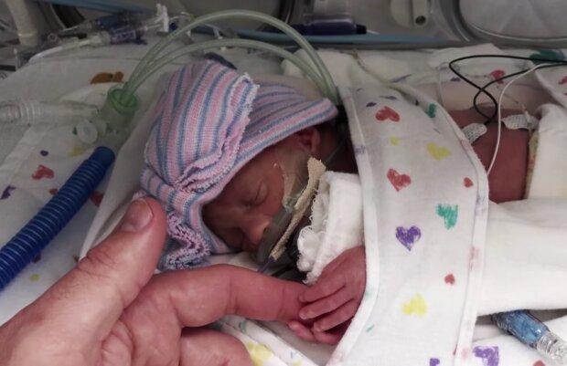 Eines der Babys von Busby. Quelle: Screenshot Youtube