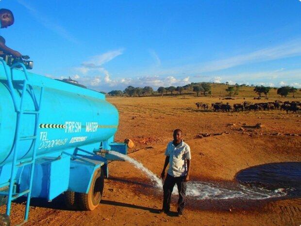 Sie werden ohne ihn nicht überleben: Ein Mann trägt Wasser zu wilden Tieren, die jeden Tag vor Durst leiden