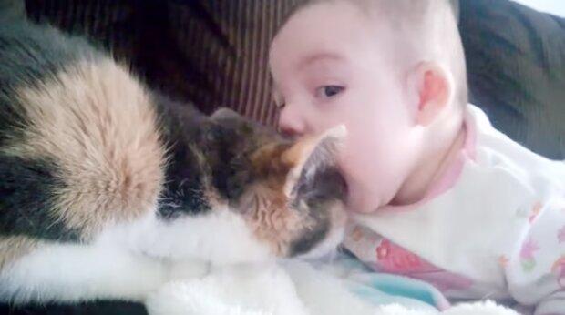 Das Kind mit der Katze. Quelle: Screenshot YouTube