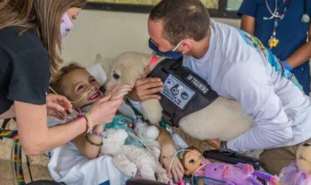 Ein Freund wird helfen: Ein Mädchen, das nicht laufen kann, lernt einen Welpen-Helfer kennen