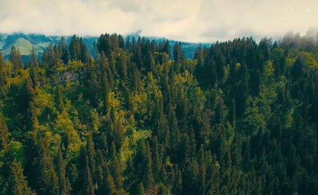 Davis Wald. Quelle: YouTube Screenshot