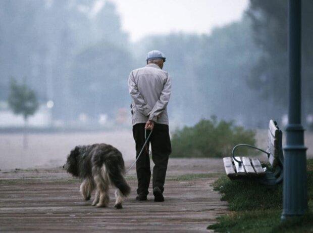 Ein einsamer alter Mann, über den seine Familie vergaß, dachte nicht einmal daran, dass ein Hund sein Leben verändern konnte