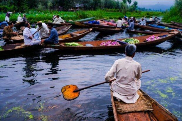 In der indischen Stadt Srinagar wird der berühmte See Dal von Algen und Schutt gereinigt