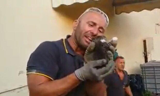 Retter und ein Kätzchen. Quelle: YouTube Screenshot