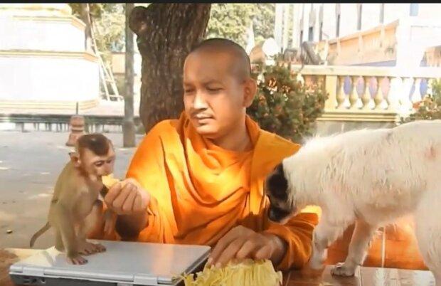 Sorge um die Harmonie der Umwelt. Quelle: Screenshot YouTube