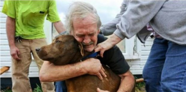 Der Mann rettete einen Hund und gab für ihn Geld, welches er sein ganzes Leben sammelte, aus